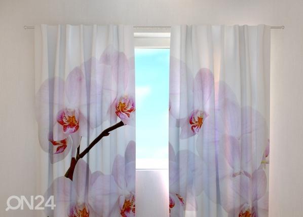 Läpinäkyvä verho SNOW-WHITE ORCHID 240x220 cm