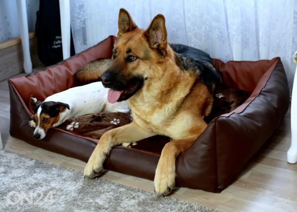 Koiranpeti S3 70x60 cm