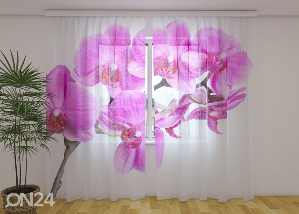 Sifonki-kuvaverho CRIMSON HAPPINESS 240x220 cm