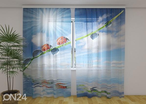 Sifonki-kuvaverho LADYBIRDS AND SUN 240x220 cm