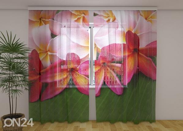 Sifonki-kuvaverho TROPICAL FLOWERS 3, 240x220 cm