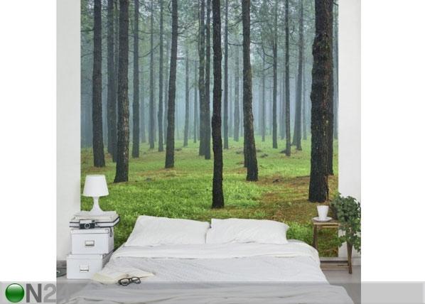 Fleece-kuvatapetti DEEP FOREST WITH PINES ON LA PALMA