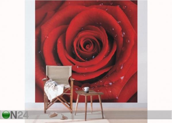 Fleece-kuvatapetti RED ROSE WITH WATER DROPS