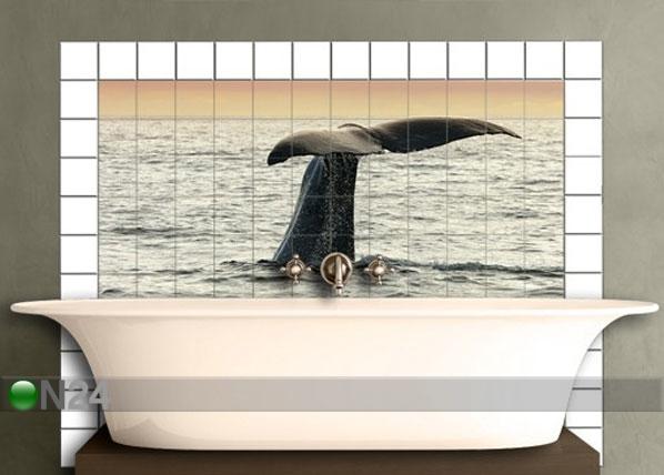 Tarrat seinälaatoille DIVING WAHLE 60x120 cm