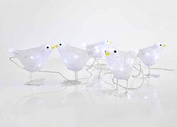 LED linnut