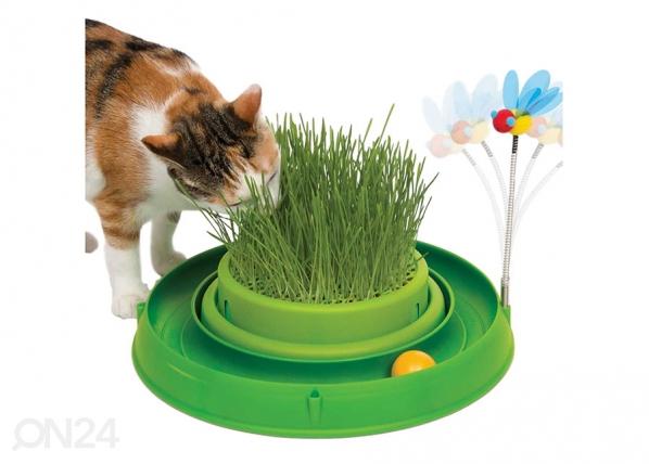 Kehittävä lelu kissoille