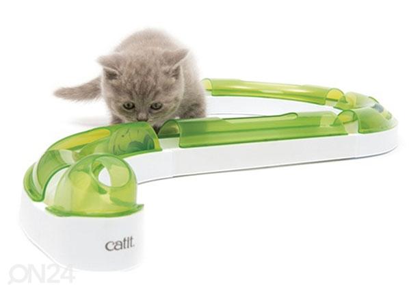 Kehittävä lelu kissoille Pallorata