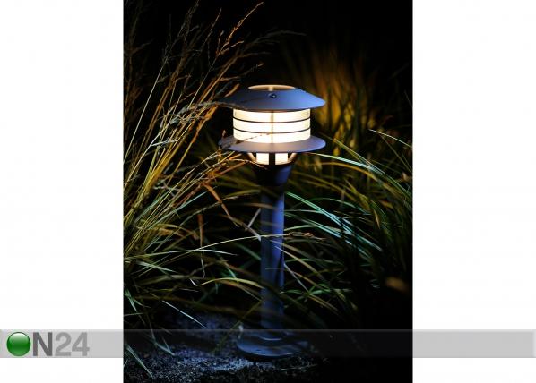Pihavalaisihn LED Rumex