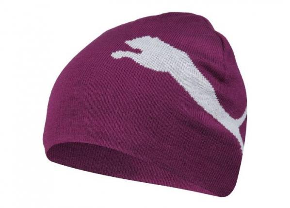 Aikuisten talvipipo Puma ESS Big Cat Beanie 052925 36