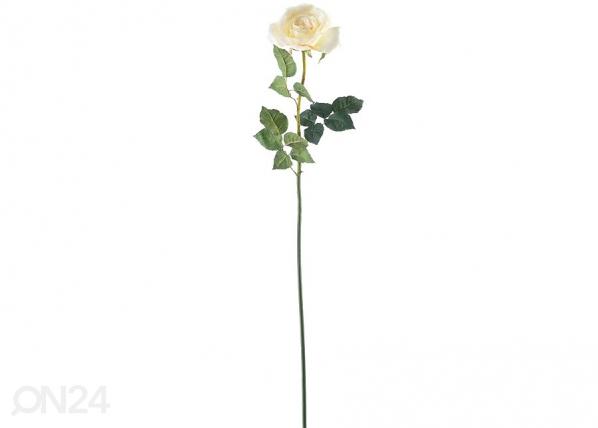 Ruusu, 2 kpl