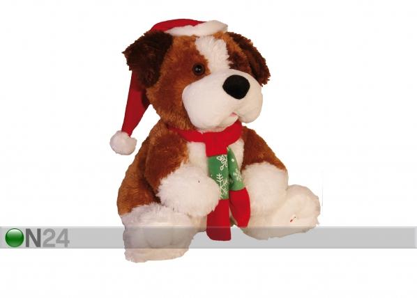 Joulukoriste istuva koiranpentu