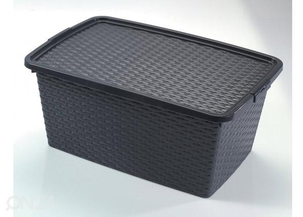 Säilytyslaatikko INTRIGO 10L
