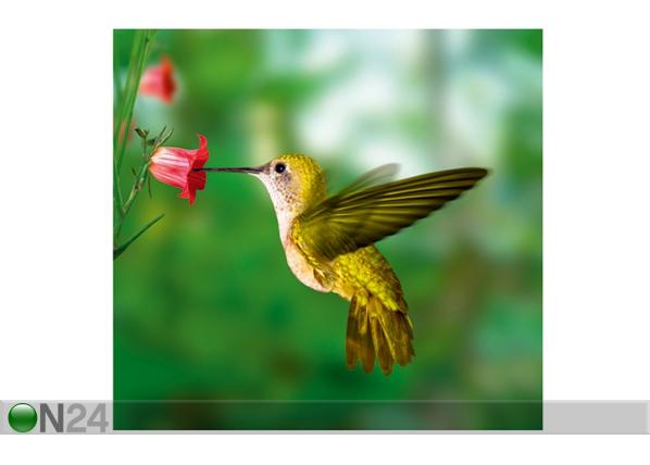 Kuvatapetti YELLOW HUMMINGBIRD 300x280 cm